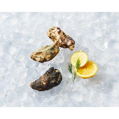 Fresh Sefood Kumamoto Oysters in Shell