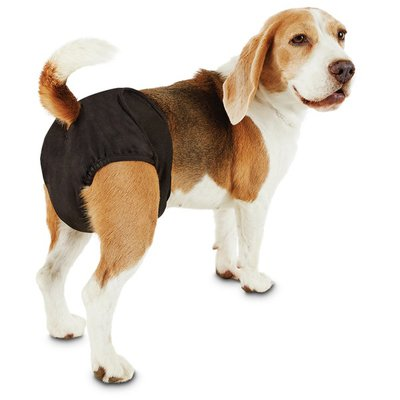 SoPhresh Medium Washable Dog Diapers