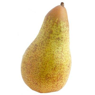 Organic Concorde Pear
