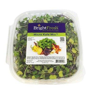 Bright Fresh Micro Kale Mix