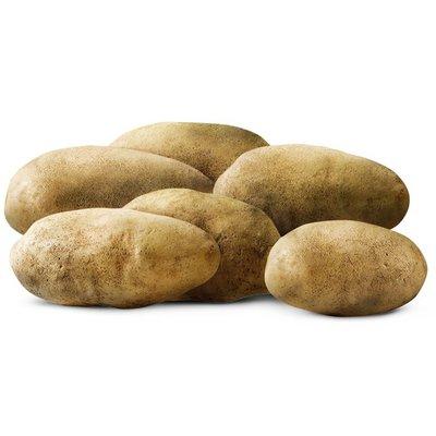 Baking Potatoes, Bag