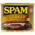 SPAM Oven Roasted Turkey Canned Meat