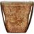 Del Monte Fruit & Oats Apple Cinnamon Plastic Fruit Cup Snacks