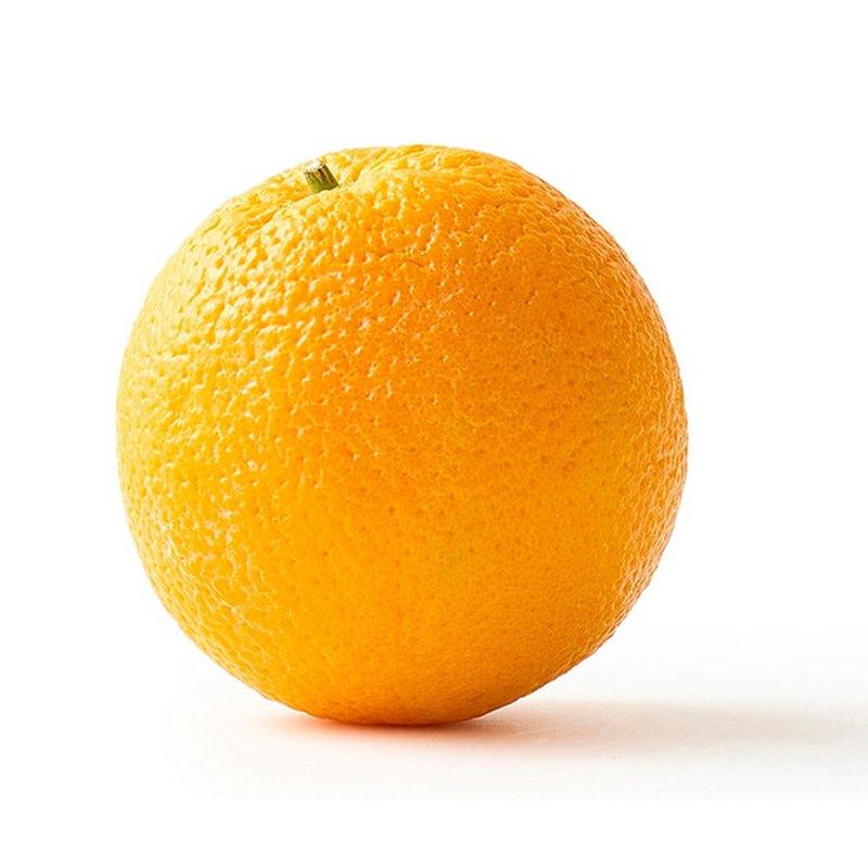 Large Navel Orange