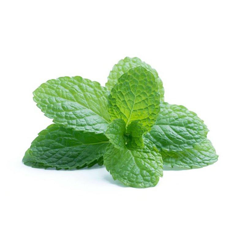 Lucinda's Organic Mint