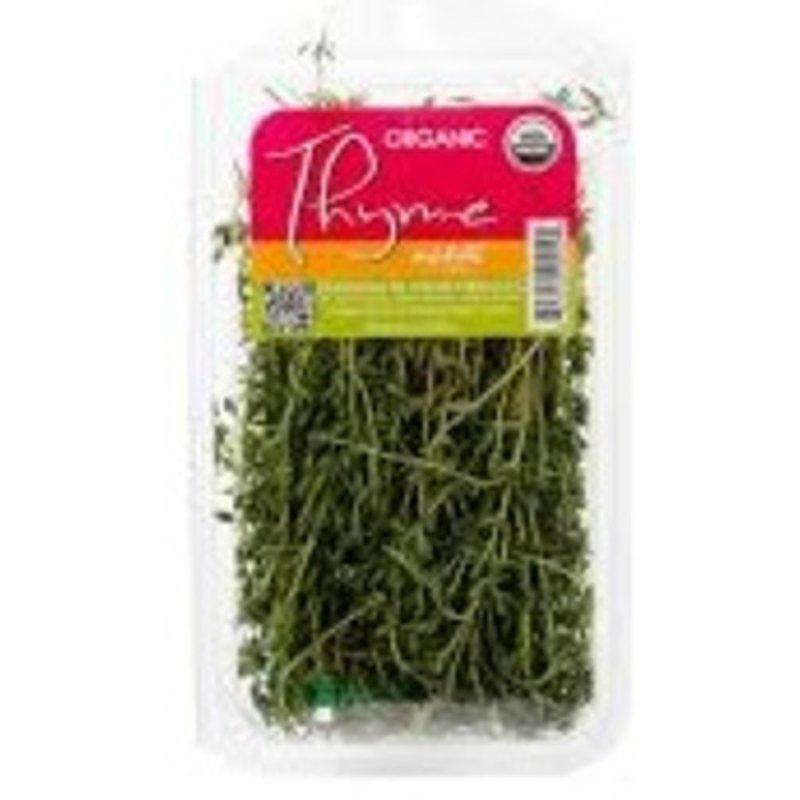 Infinite Herbs Thyme