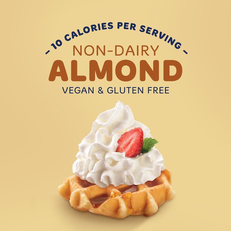 Reddi Wip Non Dairy Almond Whipped Cream (6 oz) from Food ...