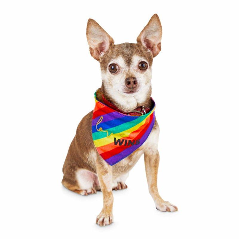 Bond & Co. Small to Medium Pride Saying Pet Bandana