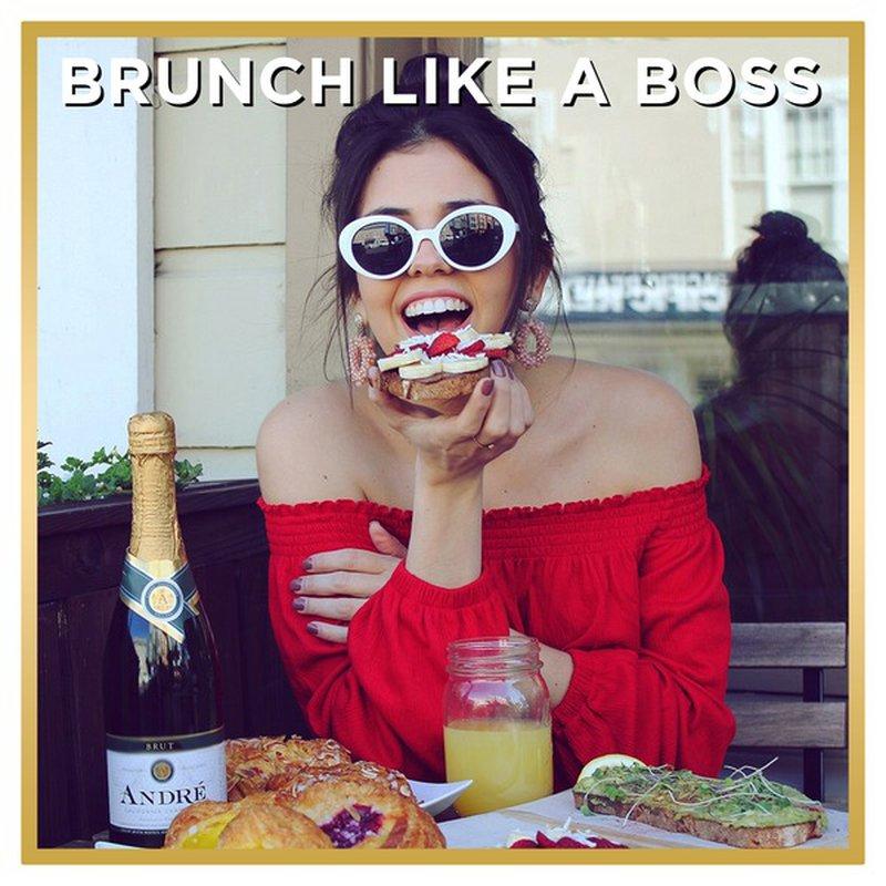 Andre Brut Champagne Sparkling Wine