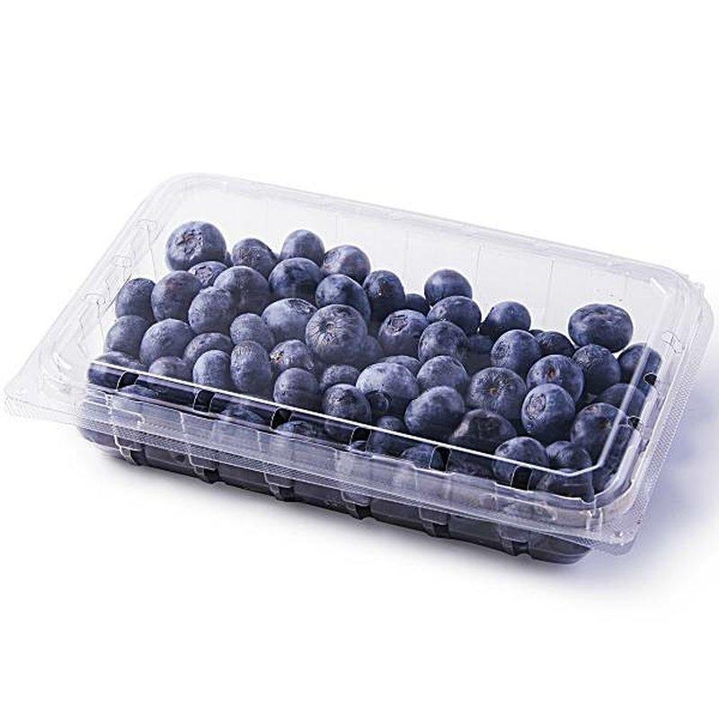 Gables Fine Berries Fresh Blueberries