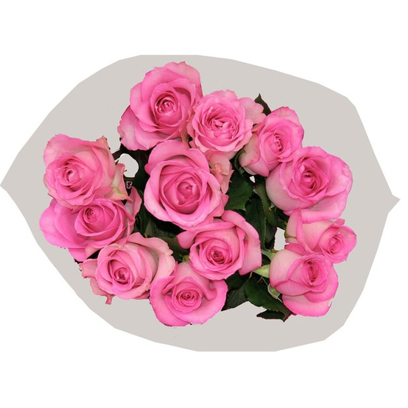 Dozen Color Roses