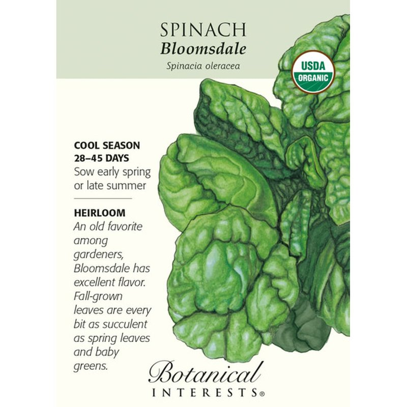 Botanical Interests Spinach Bloomsdale