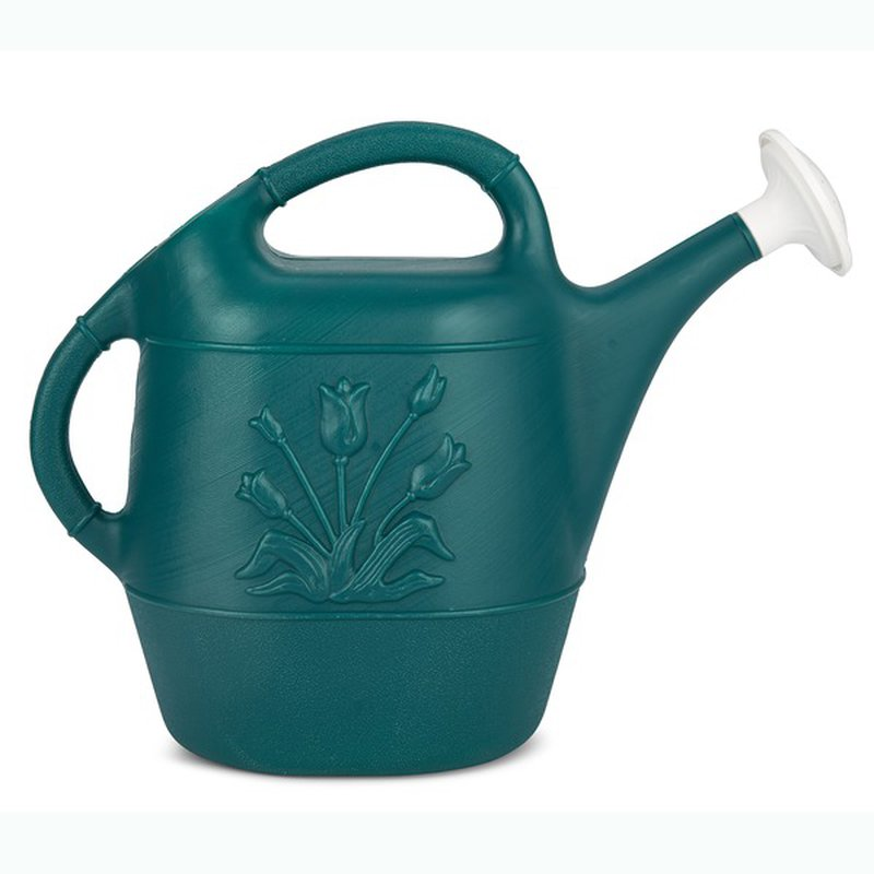 United Solutions Hunter Green Watering Can