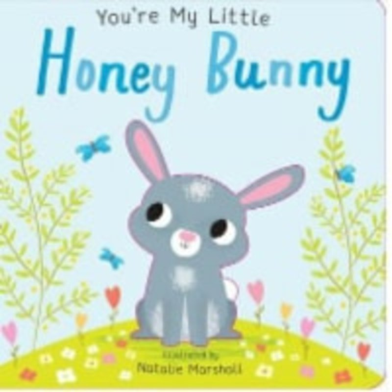Silver Dolphin Books You're My Little Honey Bunny Board Book