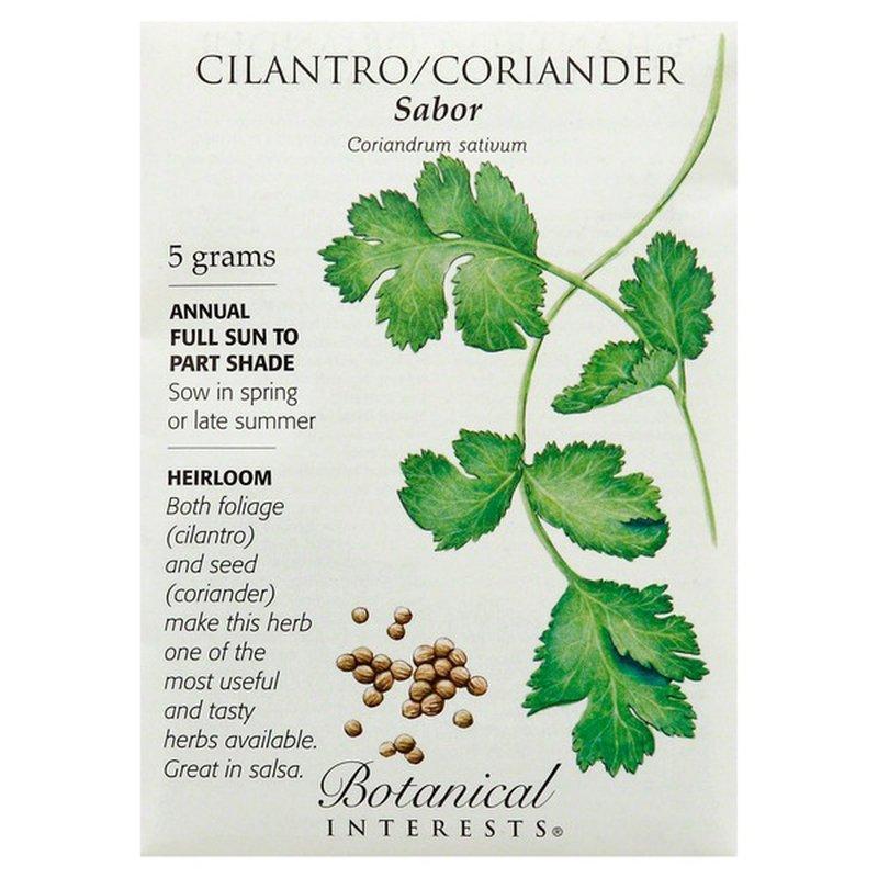 Botanical Interests Cilantro Coriander
