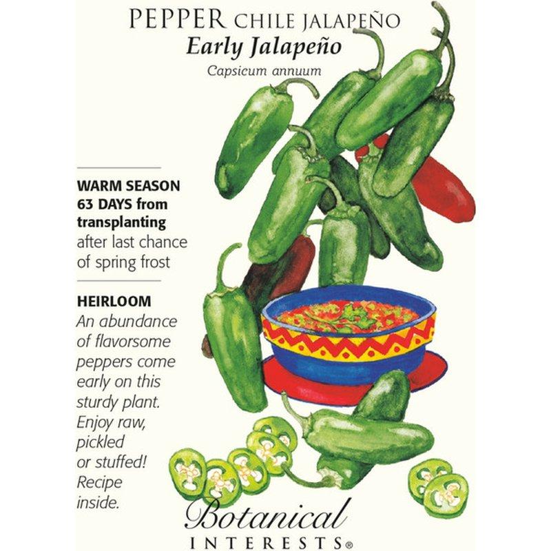 Botanical Interests Pepper Chile Early Jalapeno