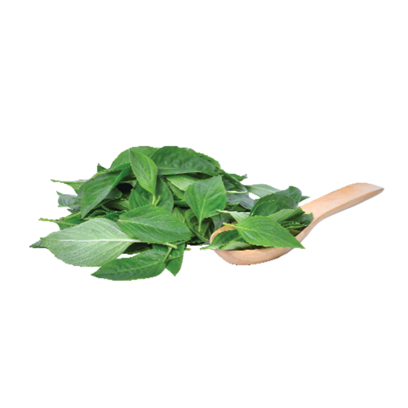 Sprouts Organic Basil