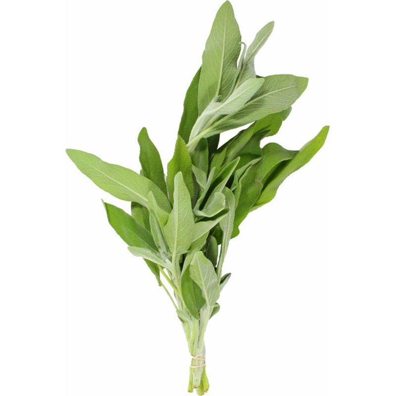 Organic Dried Sage