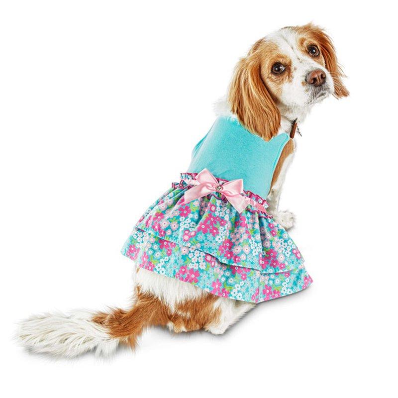 Bond & Co Medium Blue Floral Ruffle Dress For Dogsu