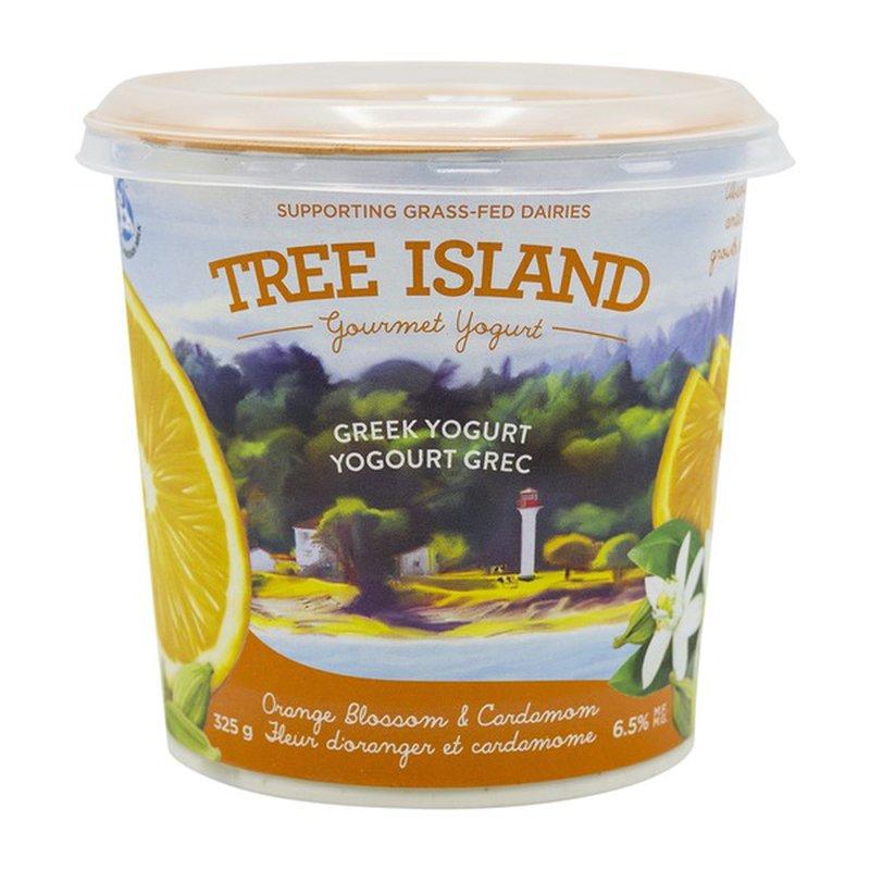 Chobani Tree Island Greek Orange