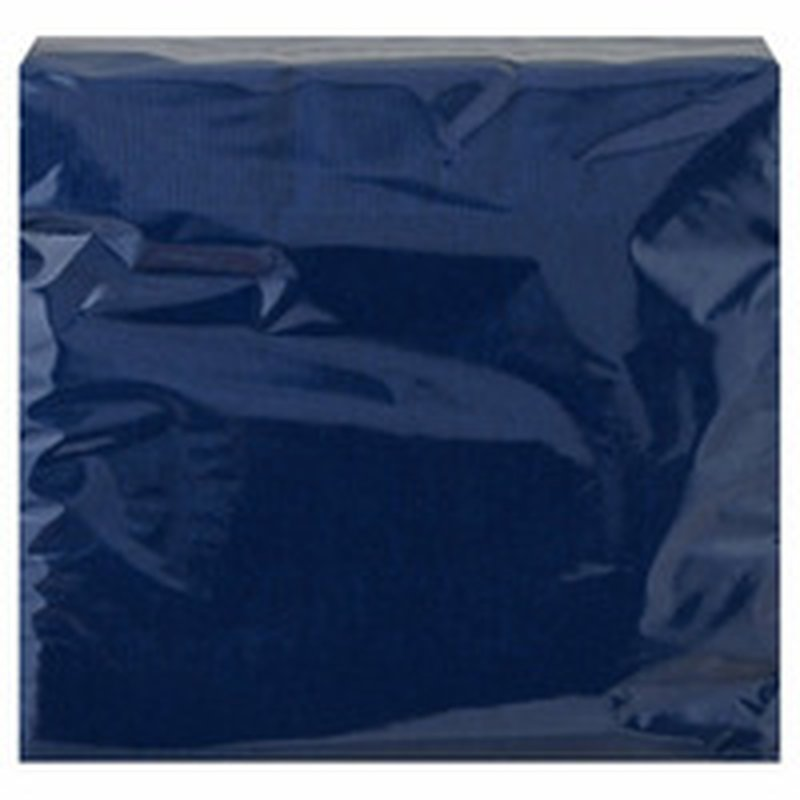 Touch of Color Navy 2-Ply Paper Lunch Napkins