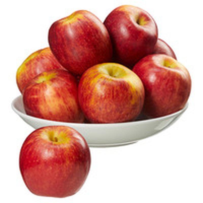 Envy Apples New Crop