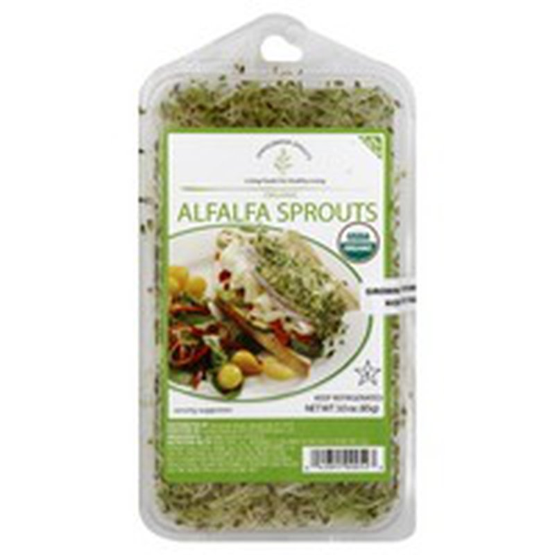 Springwater Sprouts Alfalfa Sprouts, Organic